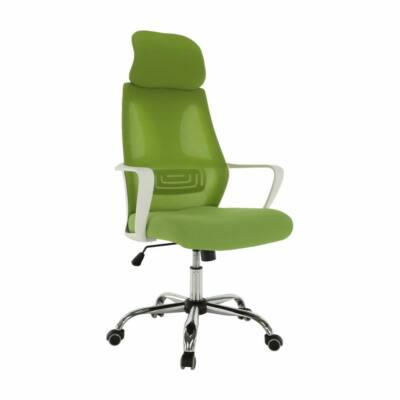 Irodai szék, zöld/fehér, TAXIS